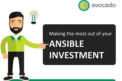 Ansible Investment